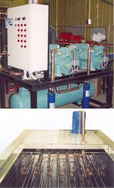 Холодильное оборудование для шокового гидроохлаждения овощей и фруктов в процессе сбора урожая